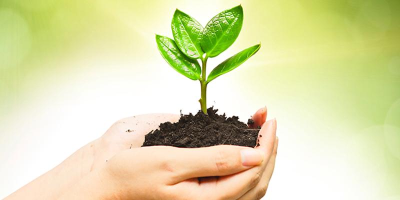 biodegradability-deathcareindustry