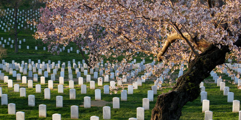 Death-Care-Industry_-Arlington-National-Cemetery
